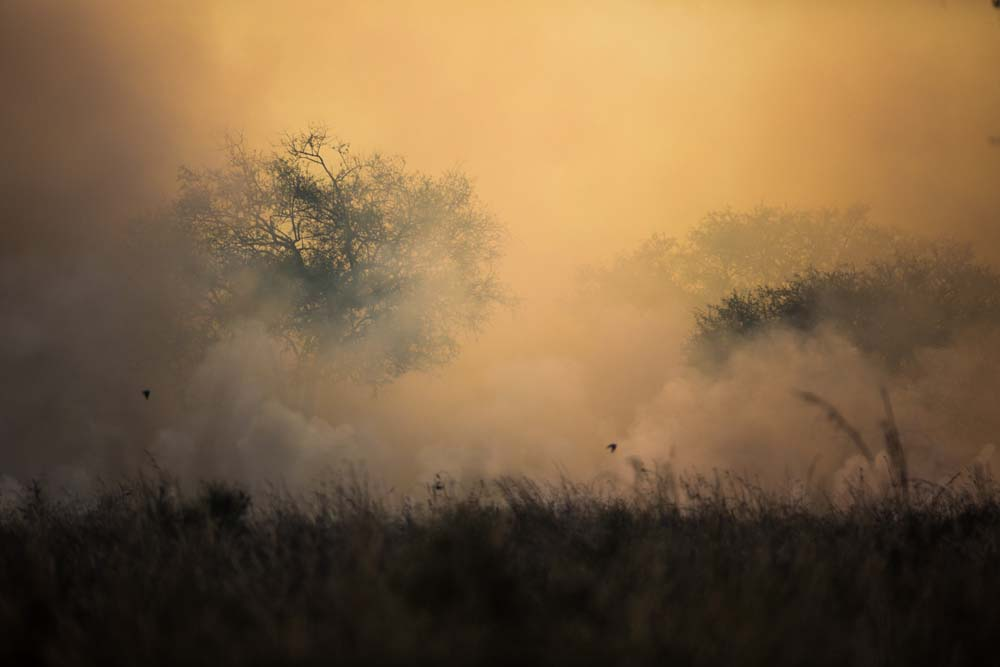 Kidepo Bush Fire