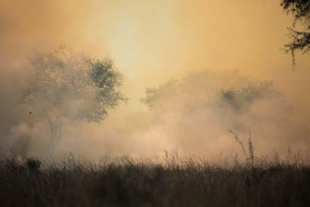 Kidepo Bush Fire