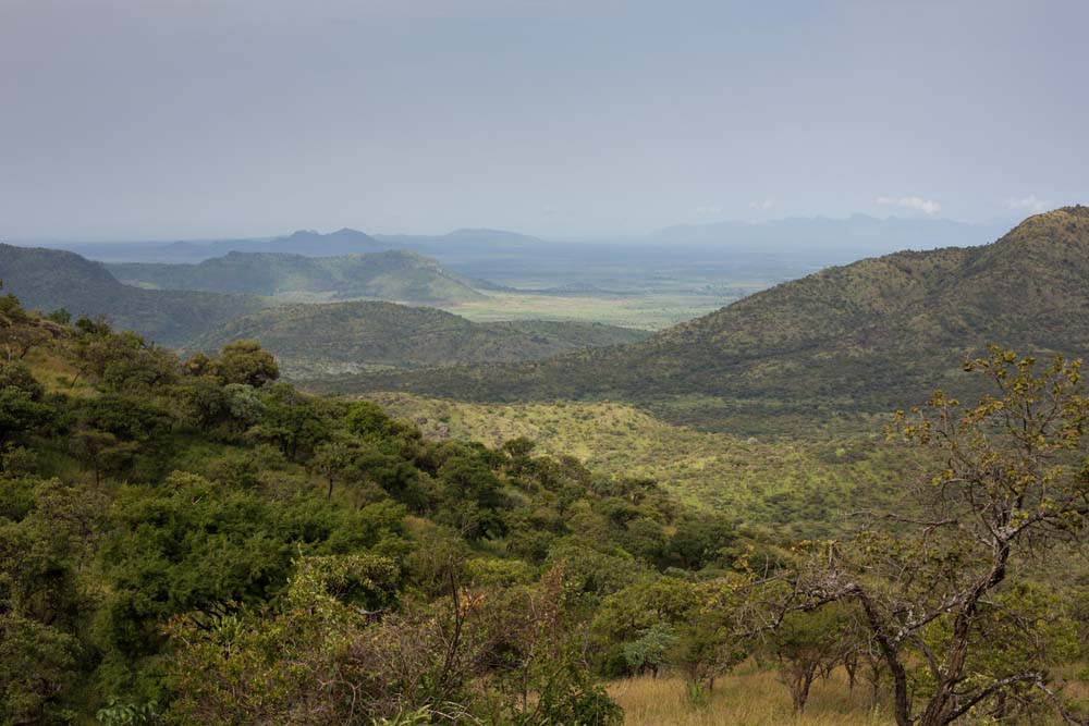 Morungule Mountains where the Ik live