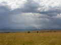 The Plains of Kidepo during wet season